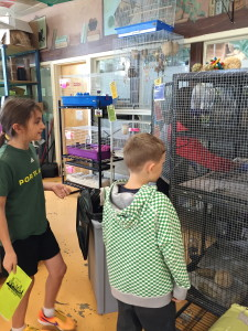 Two elementary students on a going out to the pet store to purchase rats.