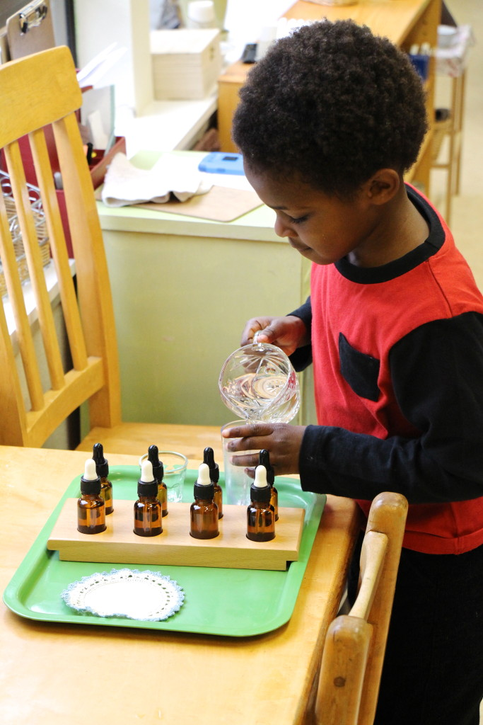 describe what montessori meant by new education essay Normalization that i have experience in a montessori class-room between the ages of 3-4 years old  in this essay i will be referring to the child as he/she human beings are born with the desire to know things, the urge to explore, and the need to master their environment.